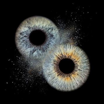 Doppeliris auf Leinwand - Iris Makroaufnahme Wandbild