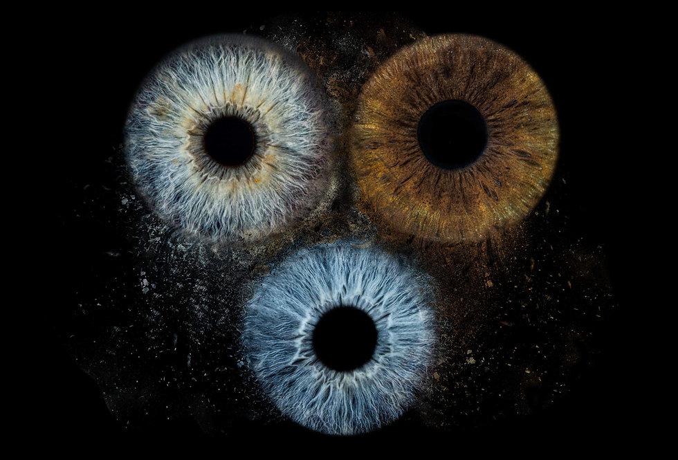 Es sind 3 Iriden (menschliches Auge ohne weissen Teil) zu sehen welche digital zusammengefügt werden. Ein Paar mit einem Kind, darauf isgt zu erkennen dass das Kind die Augenfarbe der Mutter übernommen hat. Der Vater oben rechts hat braune Augen und das Kind unten in der Mitte blaue sowie die Mutter oben links blau graue Augen.