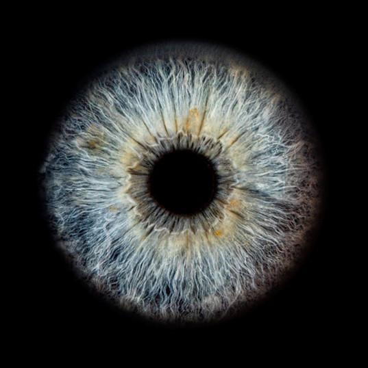 Grau , blau , gelbes Auge auf schwarzem Hintergrund - Irisfotografie in Region Seetal, Luzern, Zentralschweiz