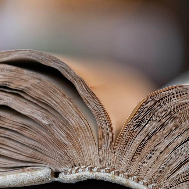 Schlengelbuch