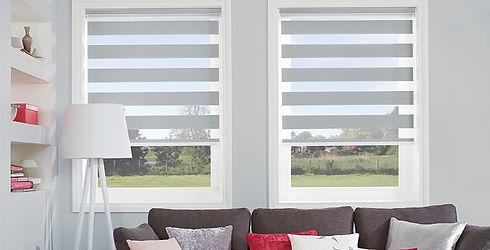vision-blinds.jpg