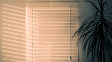 We love white wooden blinds!