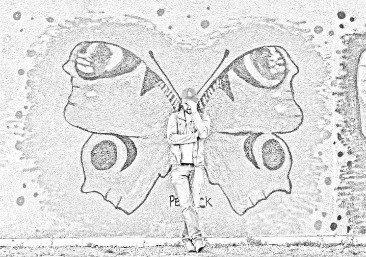 Butterfly Mural 2