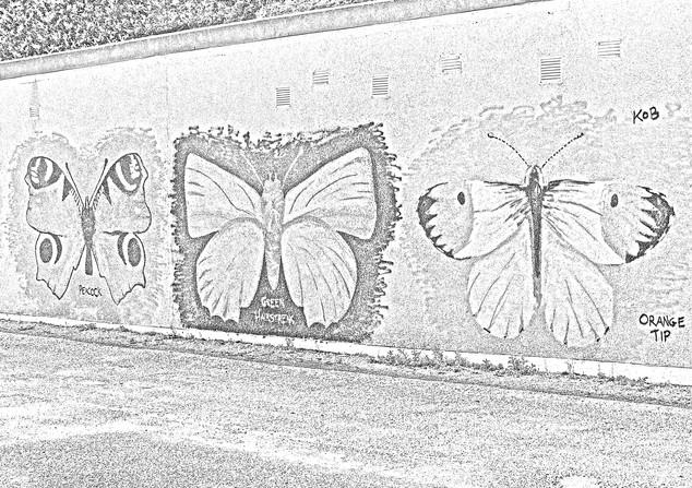 Butterfly Mural 3