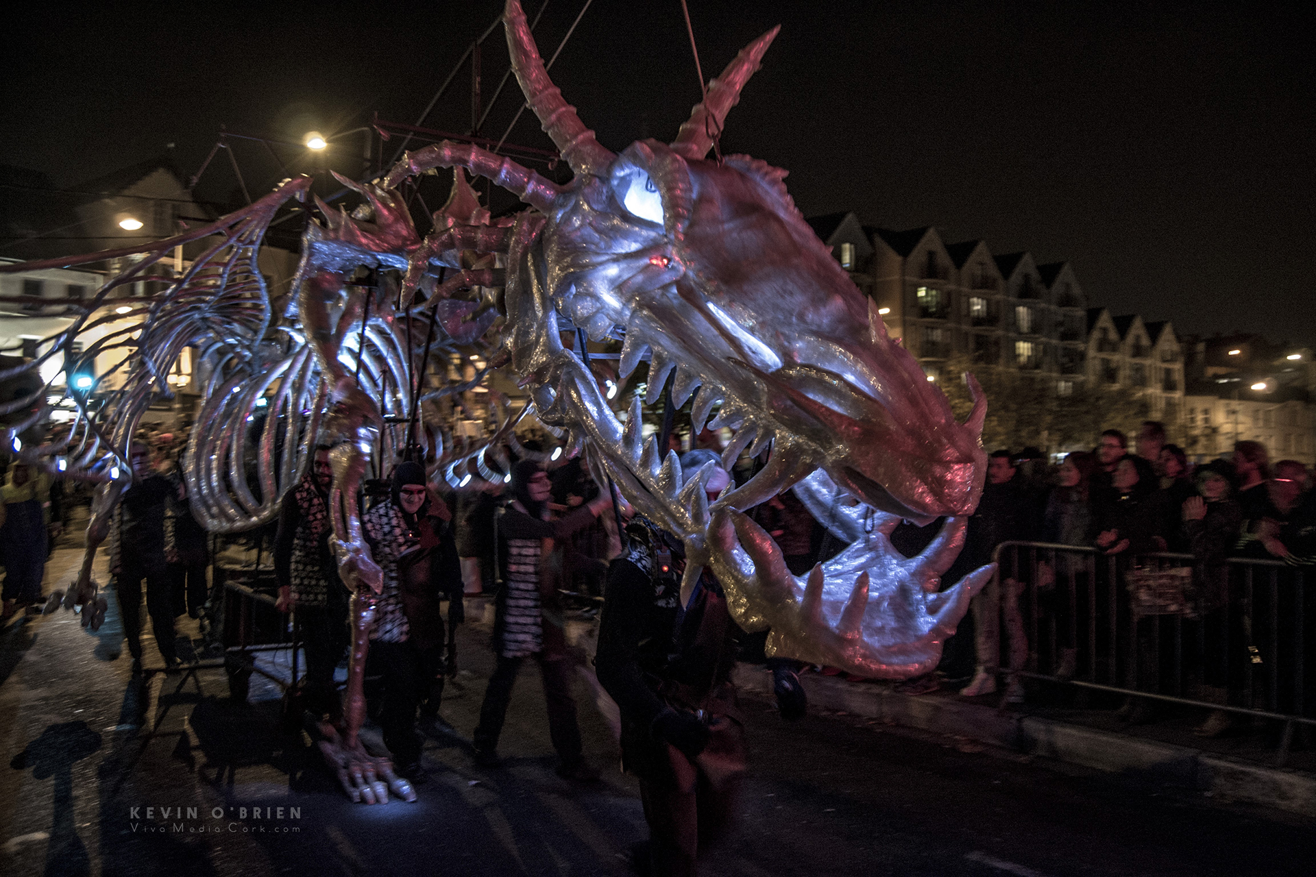 Dragon of Shandon 2016