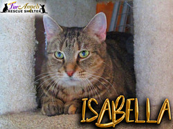 Isabelle2