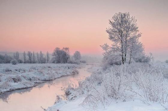 Winter Sings