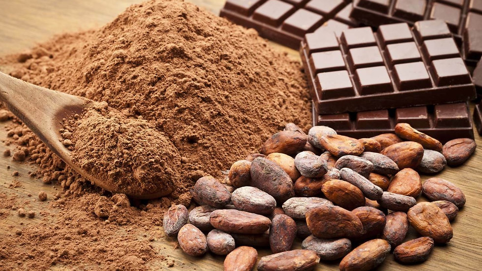 1kg Cocoa  Beans Organic 100% Premium Quality