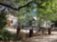 IMG_3514 2 copy.jpg