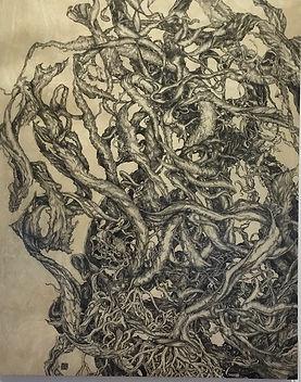 Seaweed Study by Patrice Cooke.jpg
