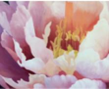 Screen Shot 2021-02-04 at 9.21.09 am.png