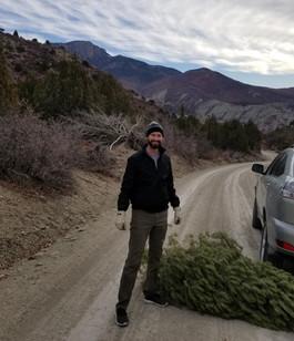 O Christmas tree! We found you
