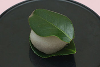 椿餅(つばきもち)