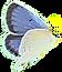 butterfly%2520-%2520periwinkle%2520flutt