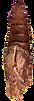 chrysalis%2520pic%2520brown_edited_edite