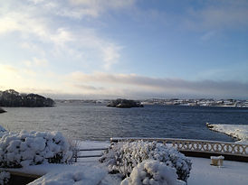 Snowy morning in Feb 2013.JPG