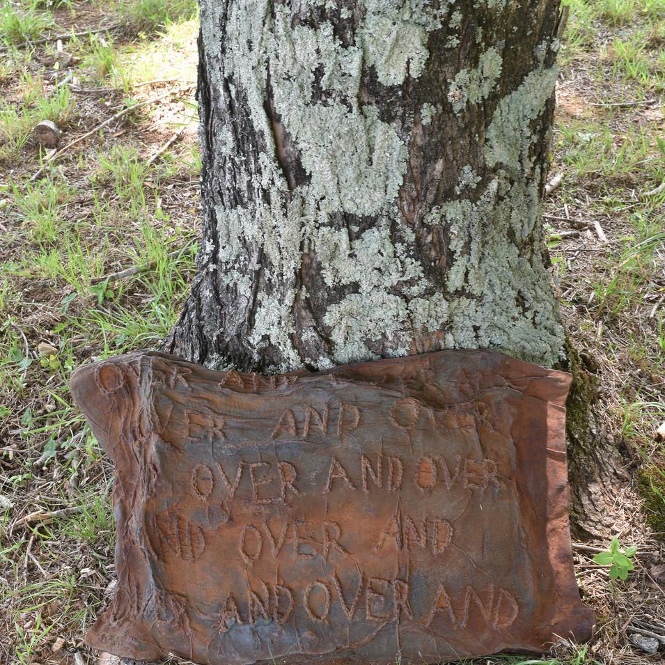 Mendoza_tree.jpg