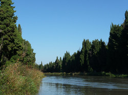 Les_Pins_du_Canal