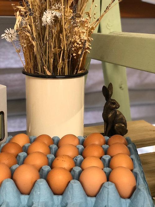 Local Free Range Eggs
