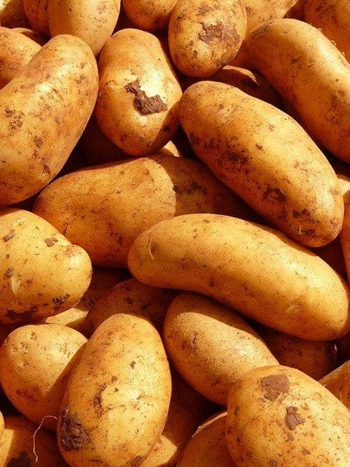 Washed Mid Salad Potatoes