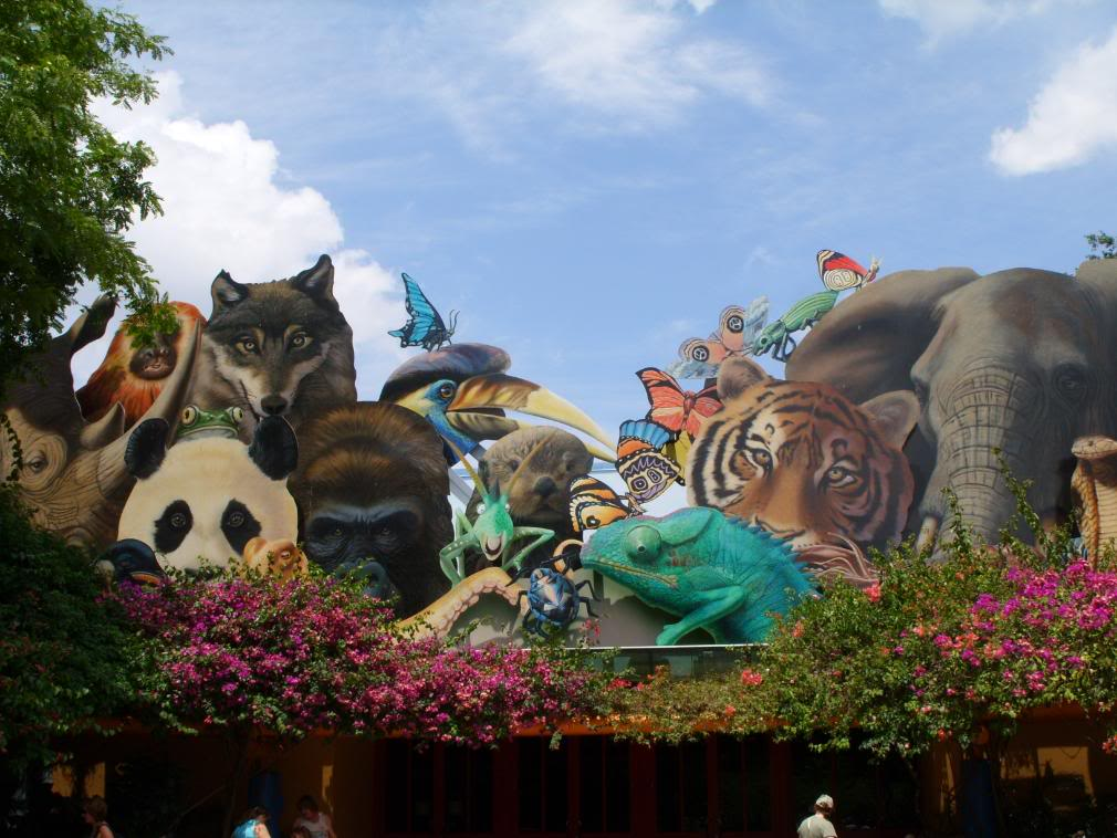 Walt Disney Animal Kingdom