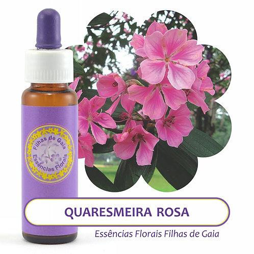 Quaresmeira Rosa - Essência Floral