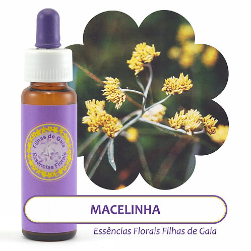 Macelinha- Essência Floral