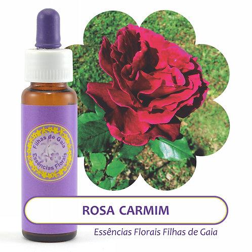 Rosa Carmim - Essência Floral