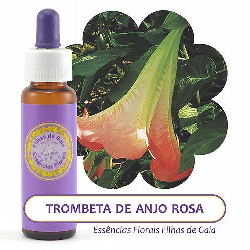 Trombeta de Anjo Rosa - Essência Floral
