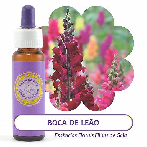 Boca de Leão - Essência Floral