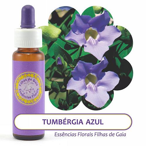 Tumbérgia Azul - Essência Floral