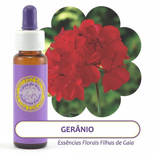 Gerânio Vermelho - Essência Floral