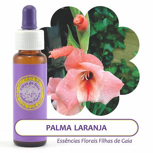 Palma Laranja - Essência Floral