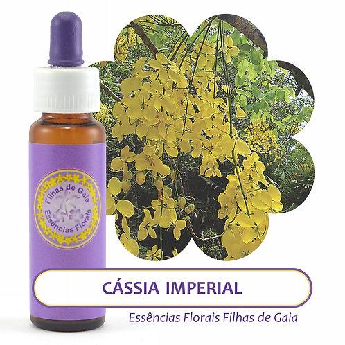 Cássia Imperial - Essência Floral