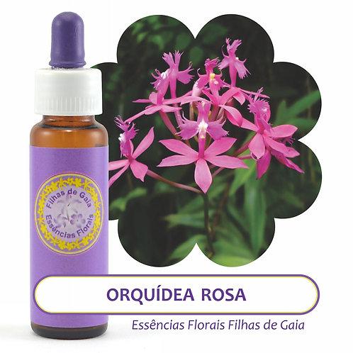 Orquídea Rosa - Essência Floral