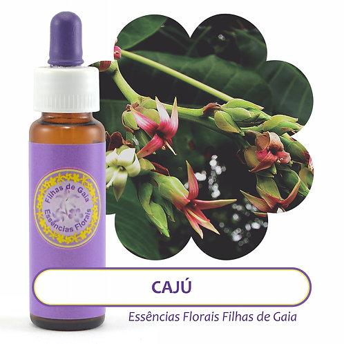 Cajú - Essência Floral