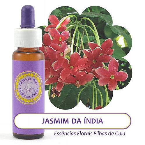 Jasmim Da Índia - Essência Floral