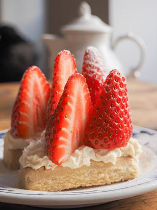Shortcakes Close Up