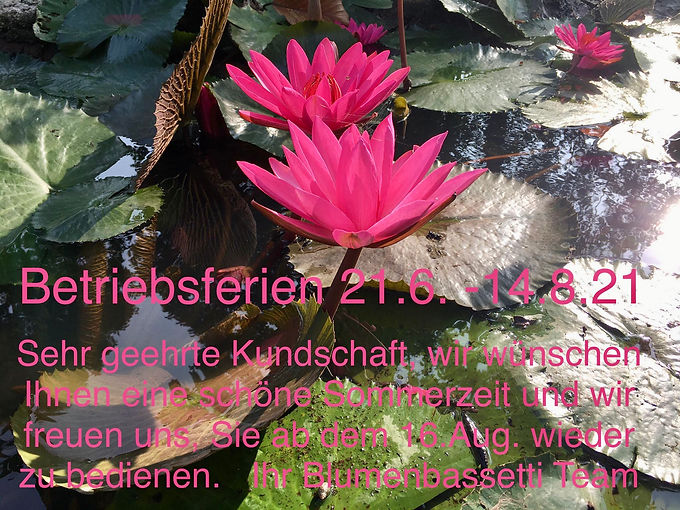 image-20211806-103555.jpeg
