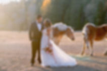 venues in orange county, getting married at the beach in California, forest wedding venues near me, best budget wedding venues, wedding chapels in hollywood ca, small wedding venues orange county, los angeles wedding ceremony locations, winery wedding venues California, small intimate wedding venues los angeles, top wedding venues in northern California, outdoor wedding los angeles, sonoma coast wedding venues, beach wedding locations san diego ca, nice wedding chapels in los angeles, unique venues los angeles, private homes for weddings southern California, unique and affordable wedding venues, barn wedding California, cheap places for wedding reception, private wedding estates in southern California, wedding chapels in malibu ca, southern outdoor wedding ideas, wedding venues central coast ca, wedding chapels in orange county, orange county event venues, inexpensive outdoor wedding venues near me, venues in los angeles ca, creative wedding venues,