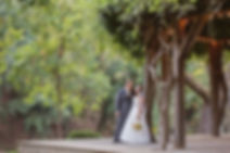mountain wedding venues California, all inclusive wedding venues California, places in california to get married, budget friendly wedding venues, california destination wedding packages, outside wedding venues los angeles, affordable outdoor wedding venues, private estate wedding venues California, beach weddings northern California, unique wedding reception venues, private beach weddings in California, private wedding venues southern California, outdoor wedding venues los angeles county, inexpensive wedding reception venues, top wedding venues in los angeles, rustic wedding venues in California, la wedding, wedding reception los angeles, small wedding chapels in California, cheap places to get married near me, affordable malibu wedding venues, small beach wedding California, best places to get married in northern California, outdoor wedding venues los angeles affordable,