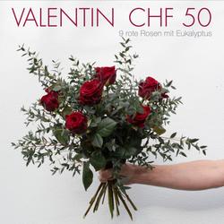 Valentin CHF 50 | 9 rote Rosen mit Eukalyptus