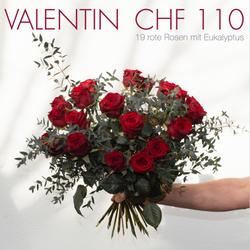 Valentin CHF 110 | 19 rote Rosen mit Eukalyptus