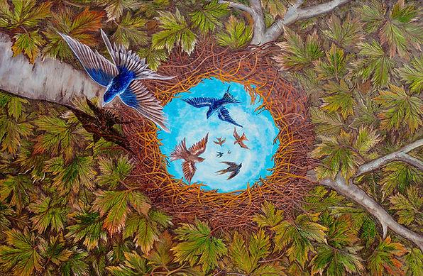 A-nest-to-escape.jpg