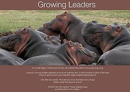 hippo_leadership.jpg