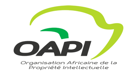 Rouse Africa Attends OAPI Training in Yaounde, Cameroon.