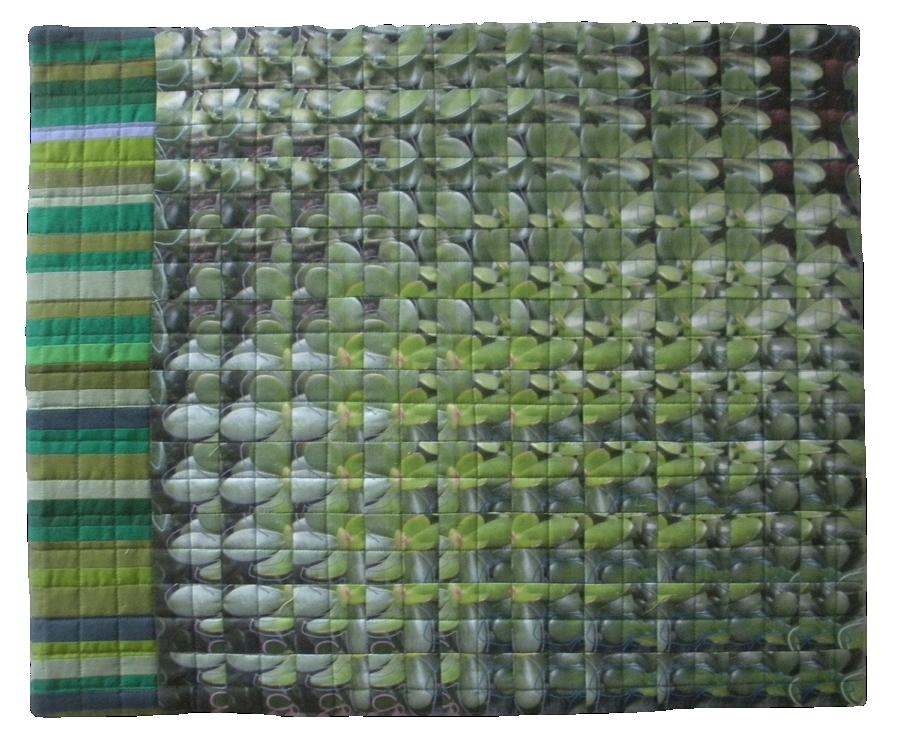 jade stripe unf.png