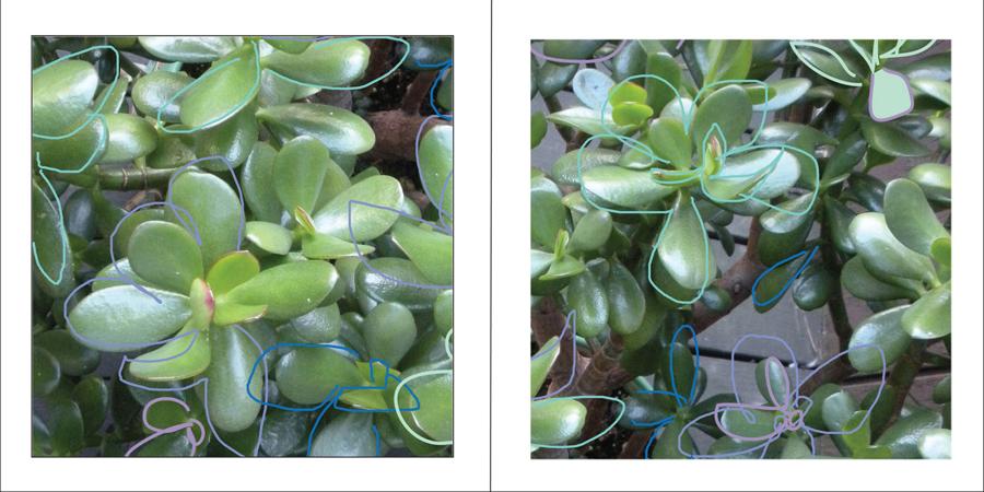Jade segments 2.png