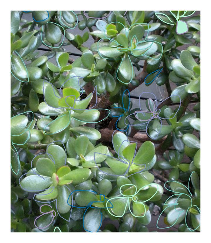 original jade 1.png