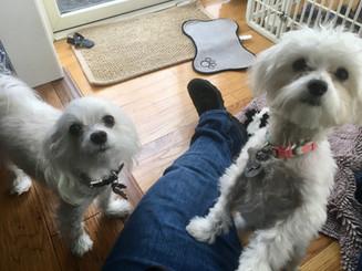 Natasha & Lola